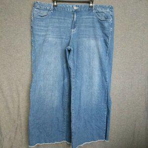 Lane Bryant A-Line Trouser Jeans Plus Sz 26